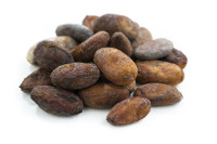 cocoa beans on white background, isolated