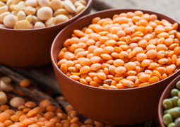 Why Beans Are the Best