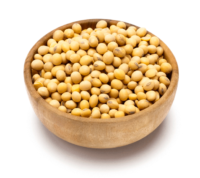 bowl of beans - plant-based protein