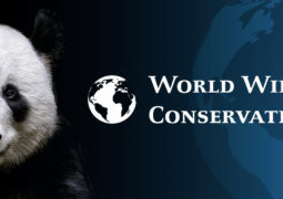 Observing World Wildlife Conservation Day
